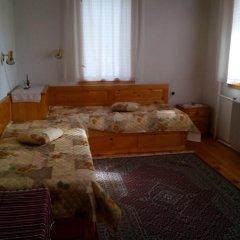 Отель Guest House Anna - Zornica Болгария, Чепеларе - отзывы, цены и фото номеров - забронировать отель Guest House Anna - Zornica онлайн комната для гостей фото 3