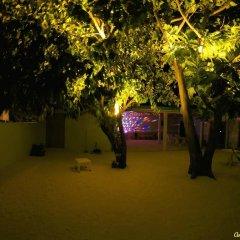 Отель Гостевой Дом Crystal Dhiffushi Мальдивы, Диффуши - отзывы, цены и фото номеров - забронировать отель Гостевой Дом Crystal Dhiffushi онлайн фото 6