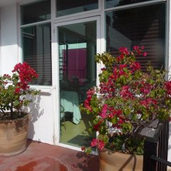 Апартаменты Sunflower Apartment near Coyoacan District Студия фото 4