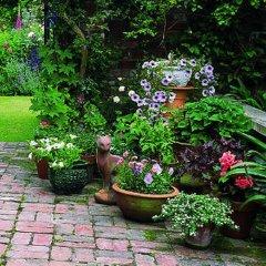German Colony Garden Израиль, Иерусалим - отзывы, цены и фото номеров - забронировать отель German Colony Garden онлайн фото 12