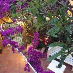 Отель Attiki Греция, Родос - отзывы, цены и фото номеров - забронировать отель Attiki онлайн фото 2