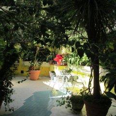 Отель Conchiglia Verde Италия, Сироло - отзывы, цены и фото номеров - забронировать отель Conchiglia Verde онлайн бассейн фото 2