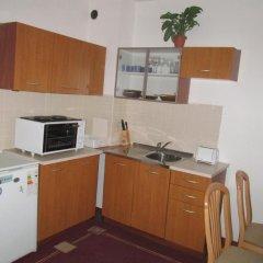 Апартаменты Alexander Services Gramadeto Apartments Банско в номере фото 2