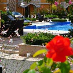 Отель Maria and Plamena Houses Болгария, Дюны - отзывы, цены и фото номеров - забронировать отель Maria and Plamena Houses онлайн бассейн