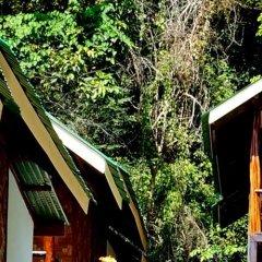 Отель Phi Phi Dusit Bungalow фото 3