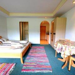 Апартаменты Auhof Apartments Стандартный номер с различными типами кроватей фото 4