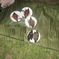 Отель Yala Meedum Camping спортивное сооружение