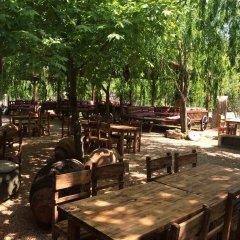 Kas Doga Park Hotel питание фото 2