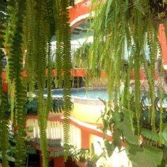 Отель Marjenny Гондурас, Копан-Руинас - отзывы, цены и фото номеров - забронировать отель Marjenny онлайн
