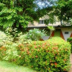 Отель Green Garden Guest House Шри-Ланка, Берувела - 1 отзыв об отеле, цены и фото номеров - забронировать отель Green Garden Guest House онлайн фото 2