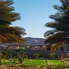 Отель Auberge Sahara Garden Марокко, Мерзуга - отзывы, цены и фото номеров - забронировать отель Auberge Sahara Garden онлайн фото 3
