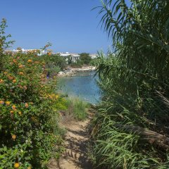 Отель Beachfront villa Del Mare Кипр, Протарас - отзывы, цены и фото номеров - забронировать отель Beachfront villa Del Mare онлайн приотельная территория