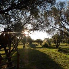 Treehouse Hostel Сан-Рафаэль приотельная территория