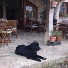 Отель Posada de Trapa с домашними животными