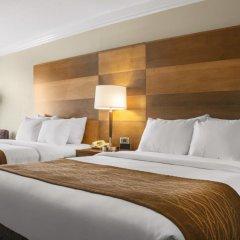 Отель Comfort Inn & Suites Durango 2* Стандартный номер с различными типами кроватей фото 5