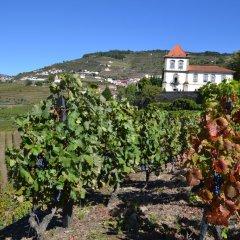 Отель Casa das Torres de Oliveira Португалия, Мезан-Фриу - отзывы, цены и фото номеров - забронировать отель Casa das Torres de Oliveira онлайн фото 11