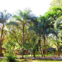 Отель El Bosque Hotel Гондурас, Копан-Руинас - отзывы, цены и фото номеров - забронировать отель El Bosque Hotel онлайн фото 16