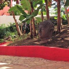 Отель Sunset Hill Lodge Французская Полинезия, Бора-Бора - отзывы, цены и фото номеров - забронировать отель Sunset Hill Lodge онлайн фото 12