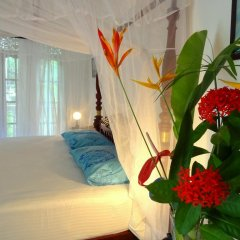 Отель French Lotus Unawatuna Guest House Унаватуна комната для гостей фото 2