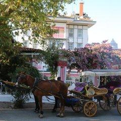 Merit Halki Palace Hotel Хейбелиада городской автобус