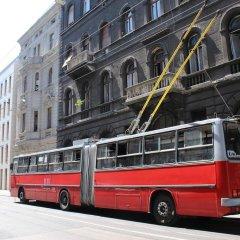 Отель Pink Parrot городской автобус