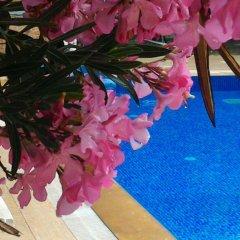 CC's Butik Hotel Турция, Олудениз - отзывы, цены и фото номеров - забронировать отель CC's Butik Hotel онлайн бассейн фото 3