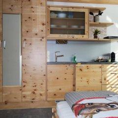 Отель Tischlmühle Appartements & mehr Студия с различными типами кроватей фото 12