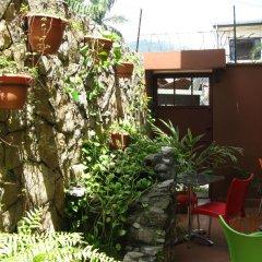 Отель Guacamaya Inn B&B Сан-Педро-Сула