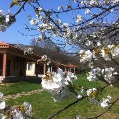 Отель Perpershka River Villas Болгария, Ардино - отзывы, цены и фото номеров - забронировать отель Perpershka River Villas онлайн помещение для мероприятий