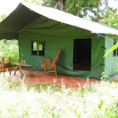 Отель Yala Peocok Camping фото 8