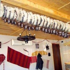 Отель Shishkovi Guesthouse Болгария, Чепеларе - отзывы, цены и фото номеров - забронировать отель Shishkovi Guesthouse онлайн развлечения