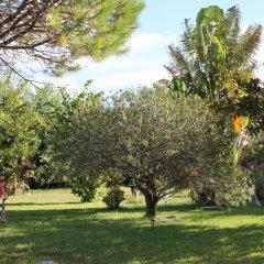 Отель Casa Barao das Laranjeiras Португалия, Понта-Делгада - отзывы, цены и фото номеров - забронировать отель Casa Barao das Laranjeiras онлайн фото 6
