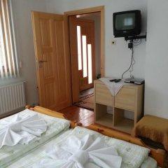 Отель Guest House Stoletnika Болгария, Чепеларе - отзывы, цены и фото номеров - забронировать отель Guest House Stoletnika онлайн удобства в номере фото 2