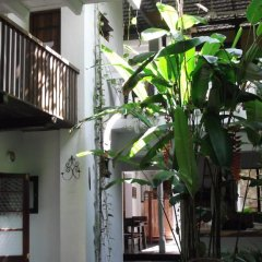 Отель Shoba Travellers Tree Home Stay фото 3