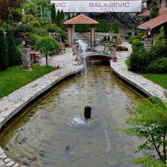 Отель Centar Balasevic Сербия, Белград - отзывы, цены и фото номеров - забронировать отель Centar Balasevic онлайн приотельная территория фото 2