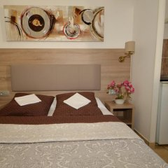 Hotel Parisien 2* Стандартный номер с двуспальной кроватью фото 14