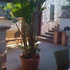 Отель Il Trullo Италия, Дизо - отзывы, цены и фото номеров - забронировать отель Il Trullo онлайн фото 2