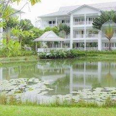 Отель Ocean Breeze 3H фото 4