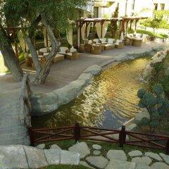 Отель Harmony Suites III Солнечный берег фото 11