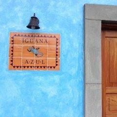 Отель Iguana Azul Гондурас, Копан-Руинас - отзывы, цены и фото номеров - забронировать отель Iguana Azul онлайн сауна