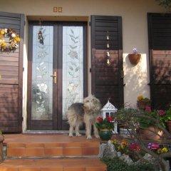 Отель B&B Al Calicanto Соризоле с домашними животными