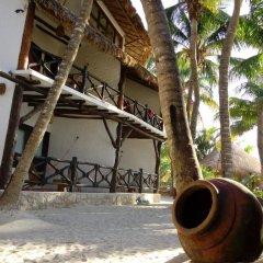 Отель Beachfront Hotel La Palapa - Adults Only Мексика, Остров Ольбокс - отзывы, цены и фото номеров - забронировать отель Beachfront Hotel La Palapa - Adults Only онлайн спортивное сооружение