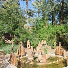 Отель Ecolodge Bab El Oued Maroc Oasis фото 3