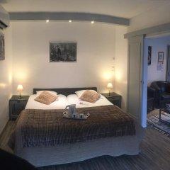 Отель Les Terrasses De Saumur 3* Стандартный номер фото 3