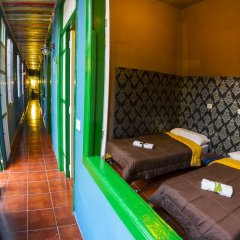 Отель B&B La Laguna комната для гостей фото 2