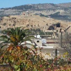 Отель Dar Jomaziat Марокко, Фес - отзывы, цены и фото номеров - забронировать отель Dar Jomaziat онлайн фото 6