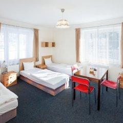Отель Pytloun Penzion Zelený Háj 2* Стандартный номер фото 4