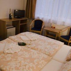 Hotel Zátiší Františkovy Lázně 3* Стандартный номер фото 6