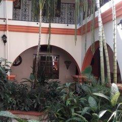 Отель Acropolis Maya Гондурас, Копан-Руинас - отзывы, цены и фото номеров - забронировать отель Acropolis Maya онлайн фото 11