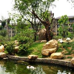 Chimelong Hotel бассейн фото 2